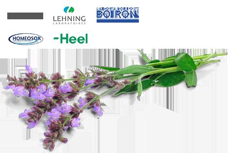 La Farmacia Puerto atiende las prescripciones homeopáticas a través de los laboratorios más importantes.